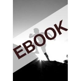 La frontera invisible e-book (versió internacional)